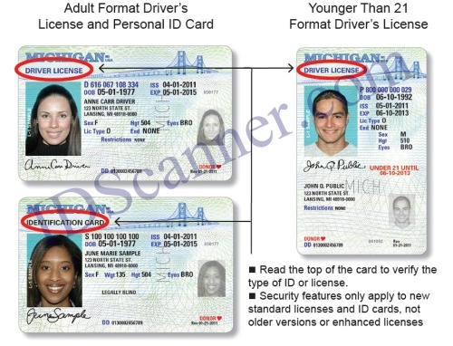 New_mi_drivers_license_front